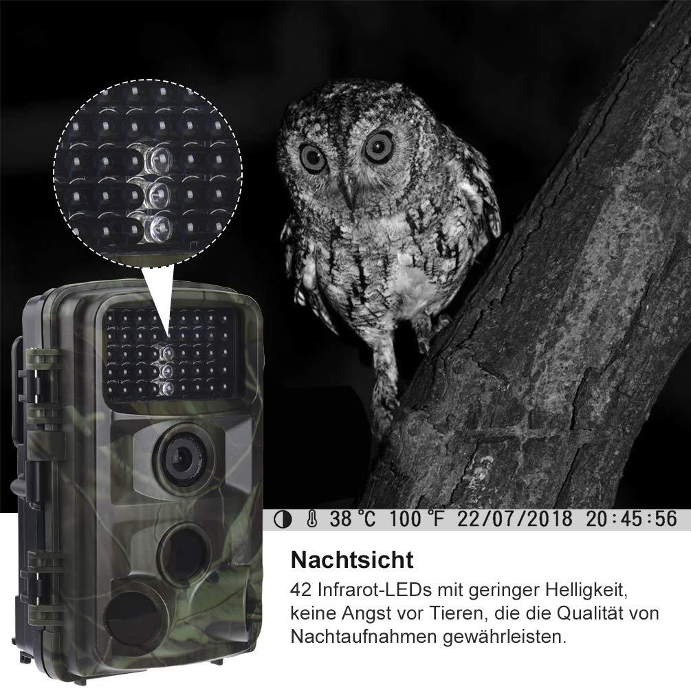 RUNACC Cam/éra de Chasse 12 Mpx 1080p avec 42 LED infrarouges Vision Nocturne 120/° et Objectif Grand Angle 110/° IP56 /étanche Trail cam/éra pour Observation de Sauvetage et s/écurit/é de la Maison