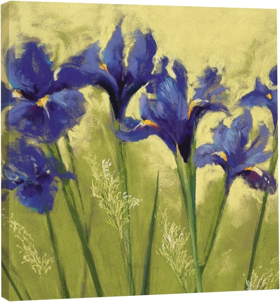 Tree-Free Greetings EcoArt Home Decor Wall Plaque, 11.25 x 11.25 Inches, Irises On Green Themed Nel Whatmore Art (85589)