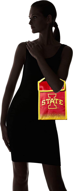 NCAA unisex Gradient Lunch Bag