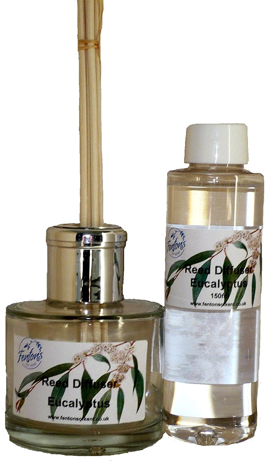 Fentons of Kent Eucalyptus Reed Diffuser Set 150ml made with essential oils and is long lasting