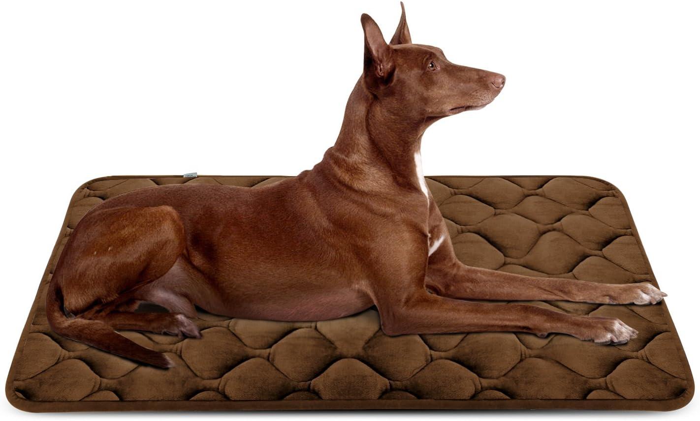 Hero Dog Cama Colchoneta Perro Grande Lavable, Cojines para Mascotas Antideslizante Vellón Almohadilla Suave 107x70 cm (Café L)