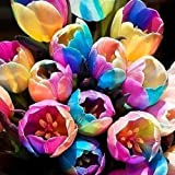Rosepoem Semillas 5pcs maceta del arco iris del tulipán Gardon Ollas Planter Inicio Sala de estar Balcón de flores