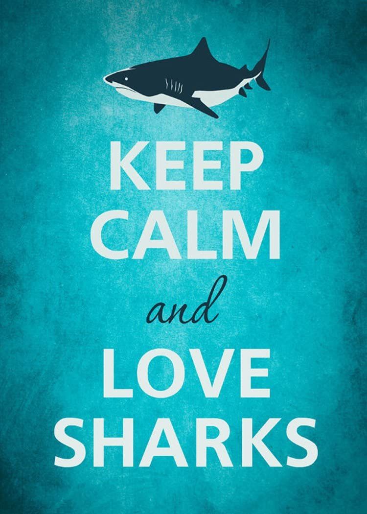 Rectangle Refrigerator Magnet - Keep Calm and Love Sharks Great White
