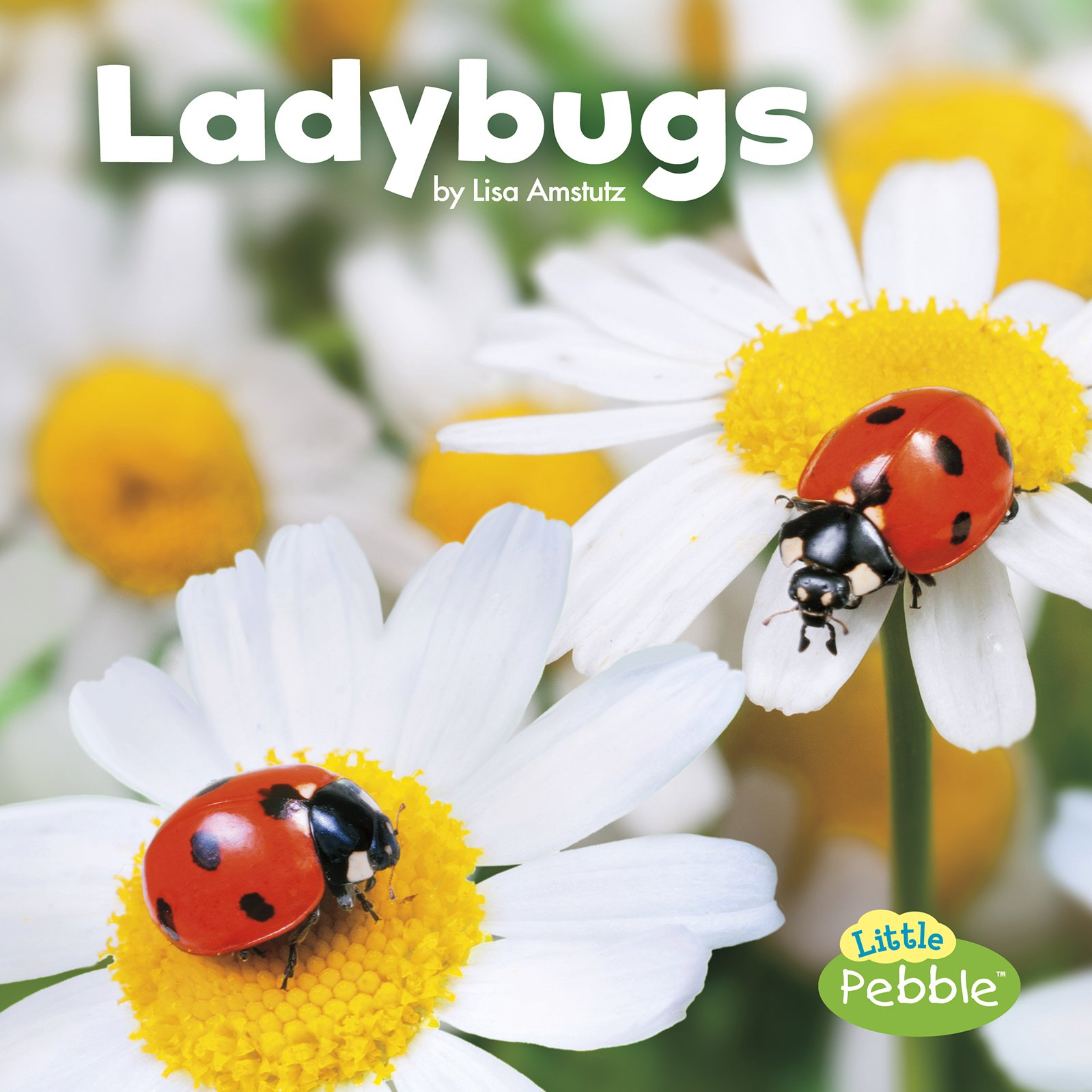 Download Ladybugs (Little Critters) PDF