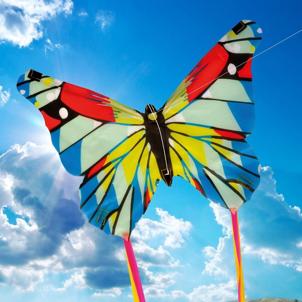 Top 14 Best Kites For Kids (2020 Reviews & Buying Guide) 14