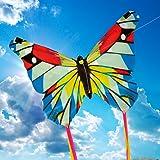 Brookite 3316 Mini Butterfly Display Kite, Multi-Colour