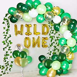 JOYYPOP Wild One Birthday Decorations Kit with Wild One Balloons Set and 8pcs Artificial Ivy Garland for 1st Birthday Decorations