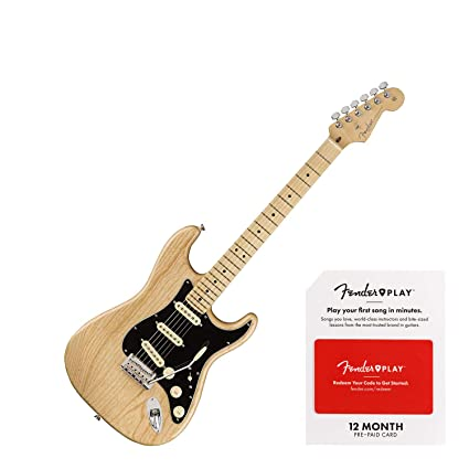 Fender American Professional Stratocaster Maple Fingerboard Electric Guitar  (Natural Bundle)