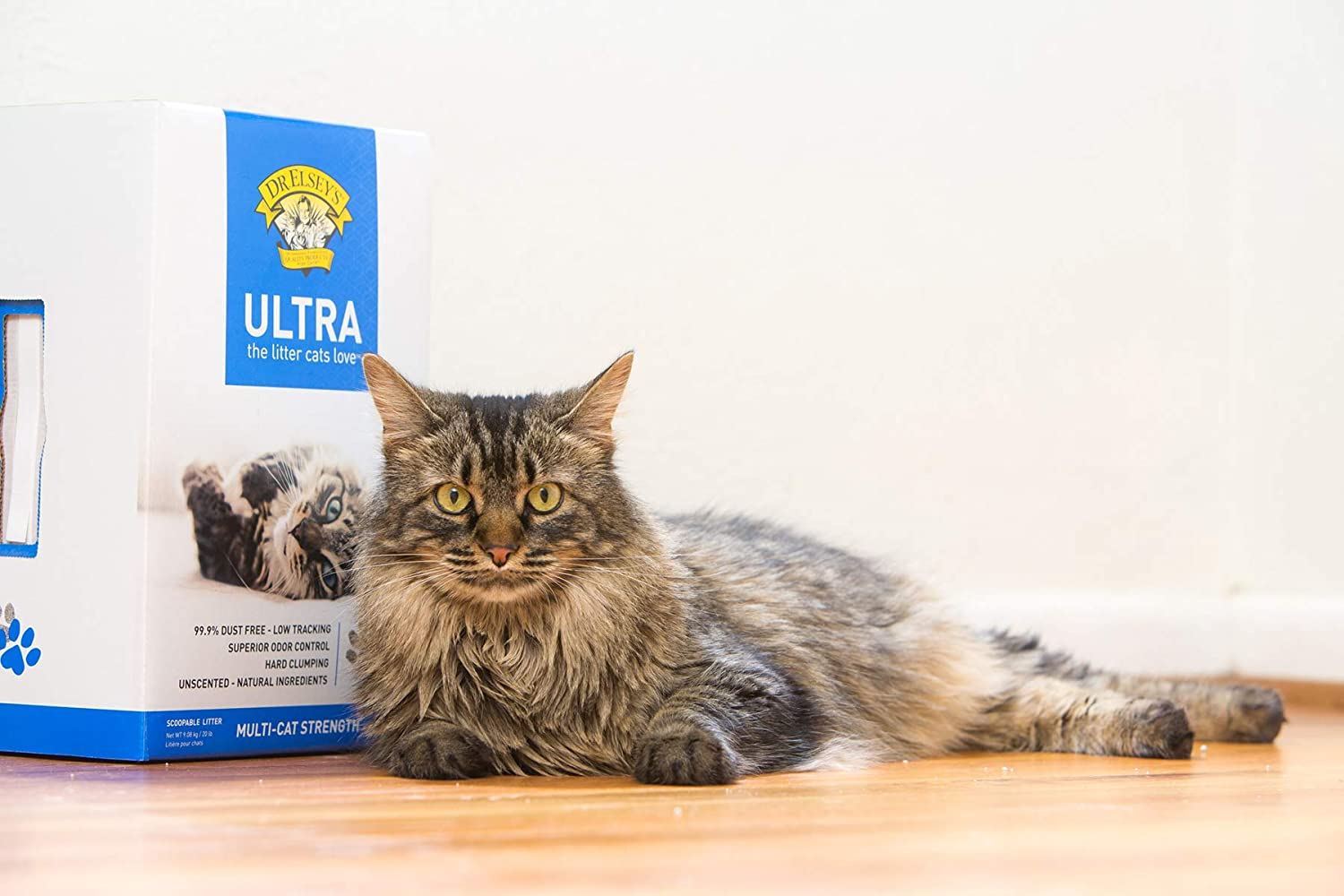 Dust Free Cat Litter