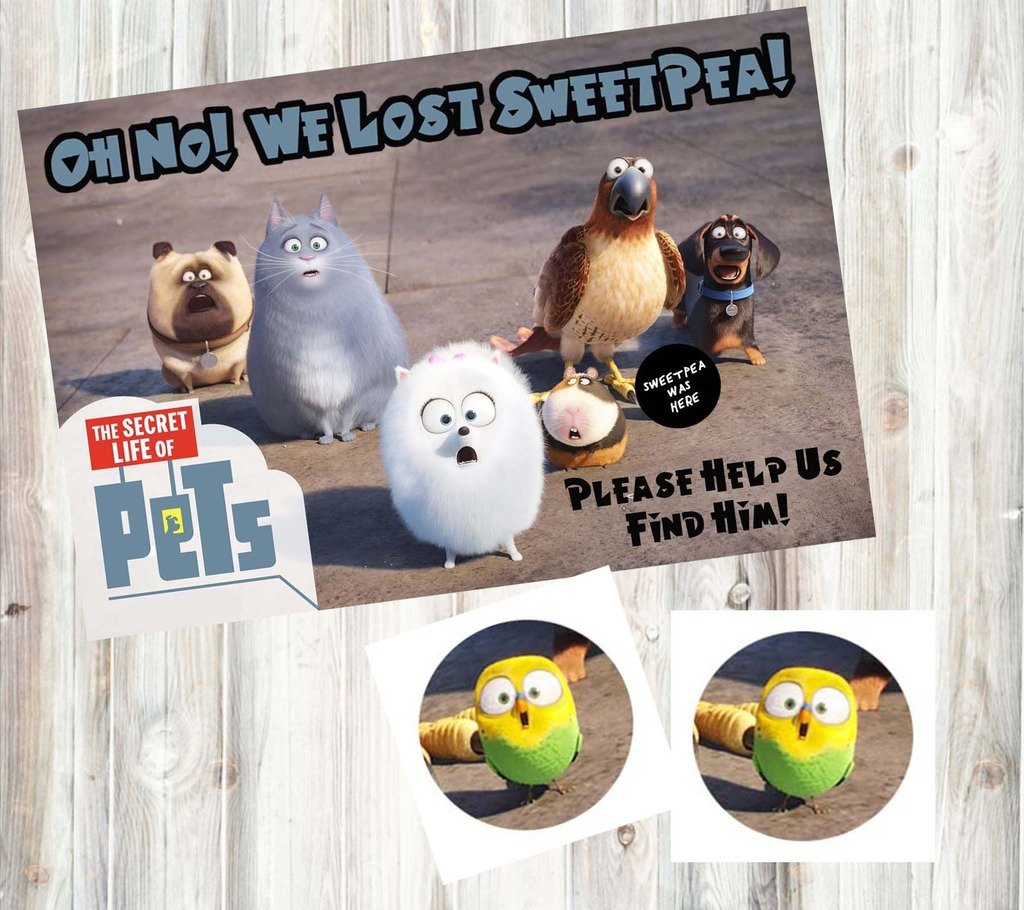 Silly Goose Gifts The Secret Life of Pets Themed Party Supplies Game