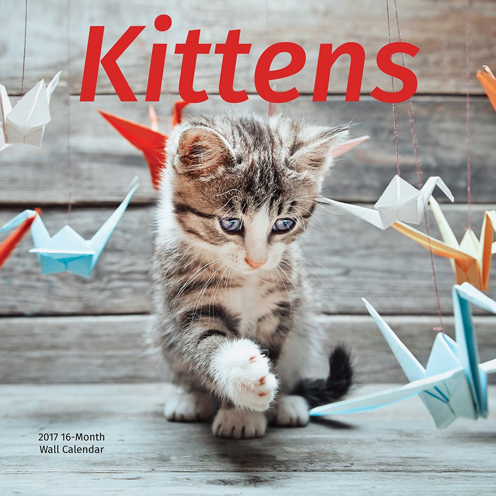 2017 Kittens Monthly Wall Calendar Featuring Full Color Photograph Images of Cute Adorable & Kittens for Cat Lovers, 12 x 12 Inches ebook