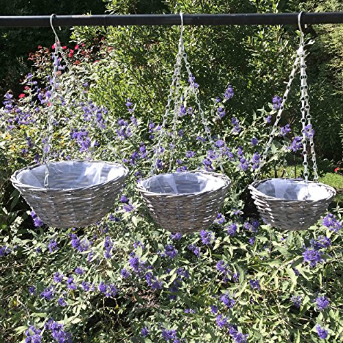 The Made By Nature Wicker Hanging Plant Baskets, Set of 3, Rustic Brown, Natural Willow, Plastic Lined, Steel Chain and Sturdy Hook, 11 3/4, 9 3/4, 7 3/4 Inches Diameters, By Whole House Worlds