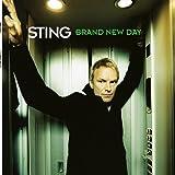 Brand New Day (2lp) [Vinyl LP]