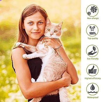 CRAZYMAN - Prevención de pulgas y garrapatas para Gatos, protección de 8 Meses, antialérgico, Ajustable y Resistente al Agua: Amazon.es: Productos para ...