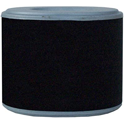 Luber-finer LAF5023 Heavy Duty Air Filter: Automotive