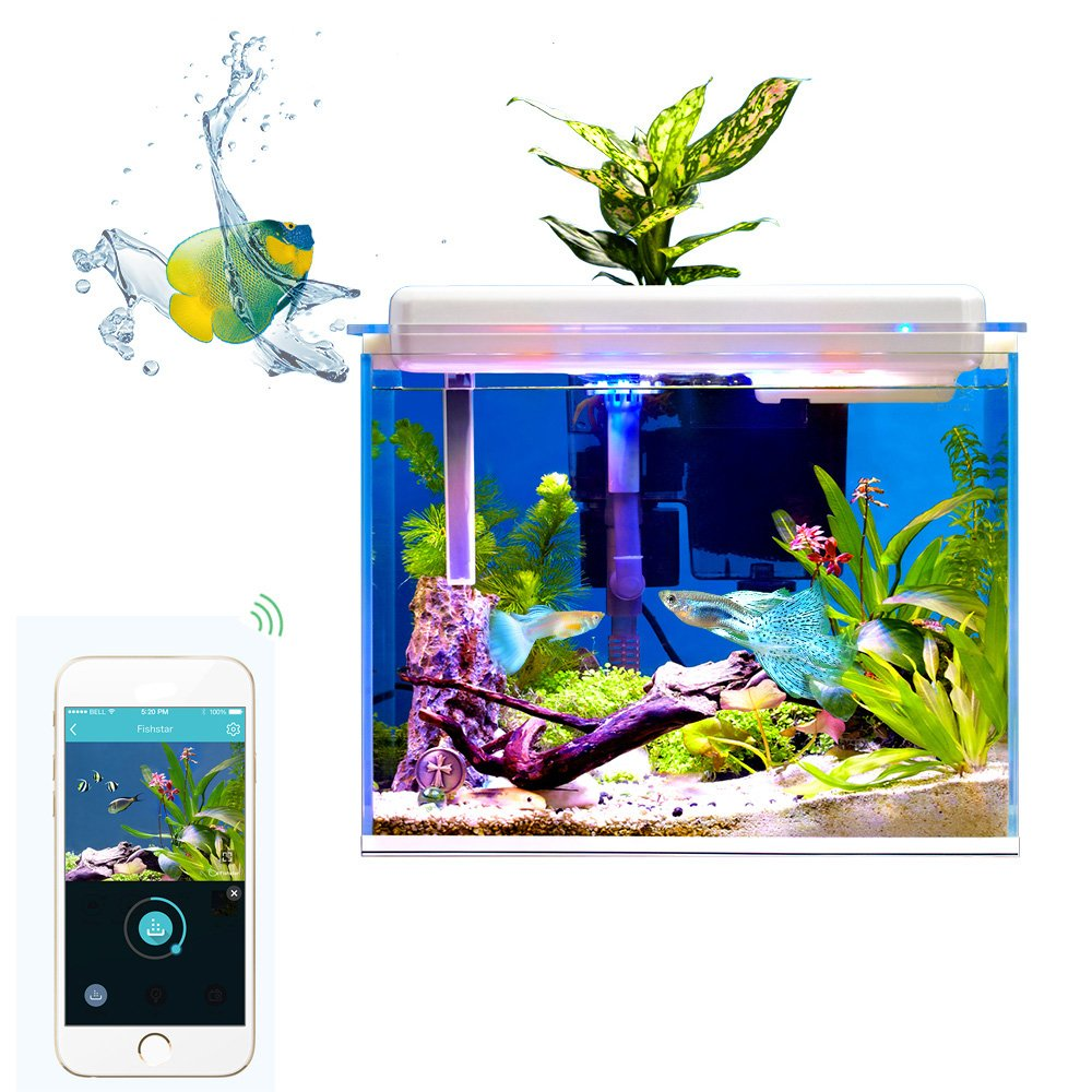fish dispenser supplies dp automatic food eheim feeder pet everyday ca programmable amazon