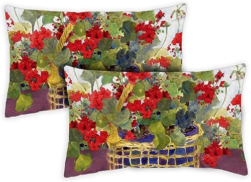 Toland Home Garden 731218 Geranium Basket 12 x 19 Inch Indoor Outdoor, Pillow with Insert 2-Pack