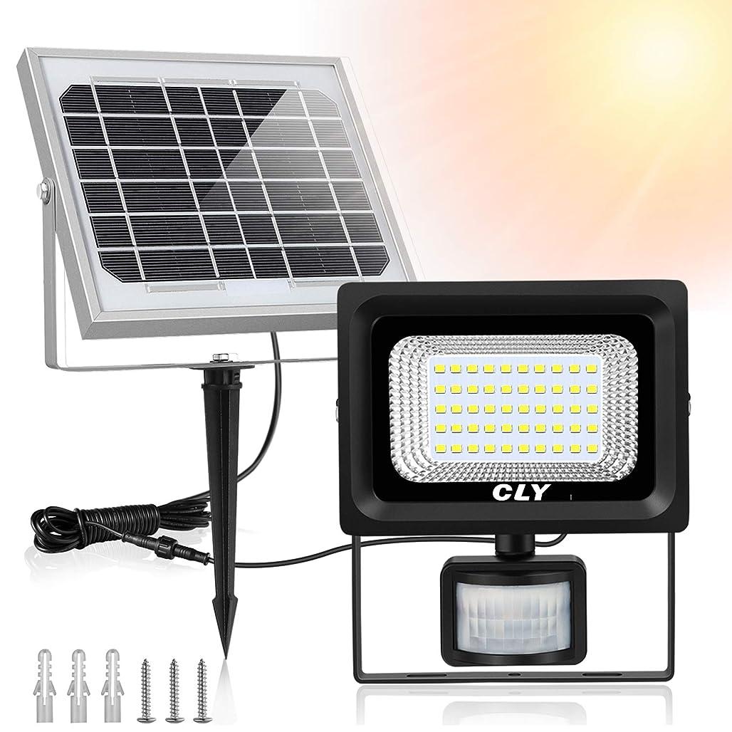 一貫した伝説不毛のムサシ RITEX フリーアーム式LEDセンサーライト(8W×2灯) 「コンセント式」 防雨型 LED-AC2016