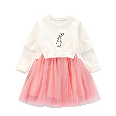 754417da74f3 Baby Girls Clothes Suit Long Sleeve Princess Embroidered Dress Sweater Dress  Tulle Cap Tutu Dresses Outfit