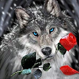 Diamond Painting Kits for Adults - 5D Diamond Painting Kit Full Drill, Wolf with Flower Diamond Art Kits for Home Wall Decor(12x12inch)