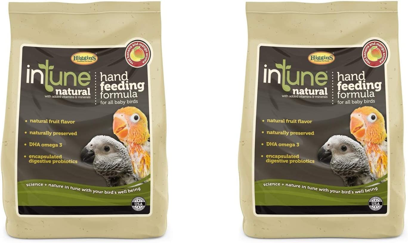 Higgins 2 Pack of Intune Hand Feeding Bird Food, 10 Ounces Each, for All Baby Birds