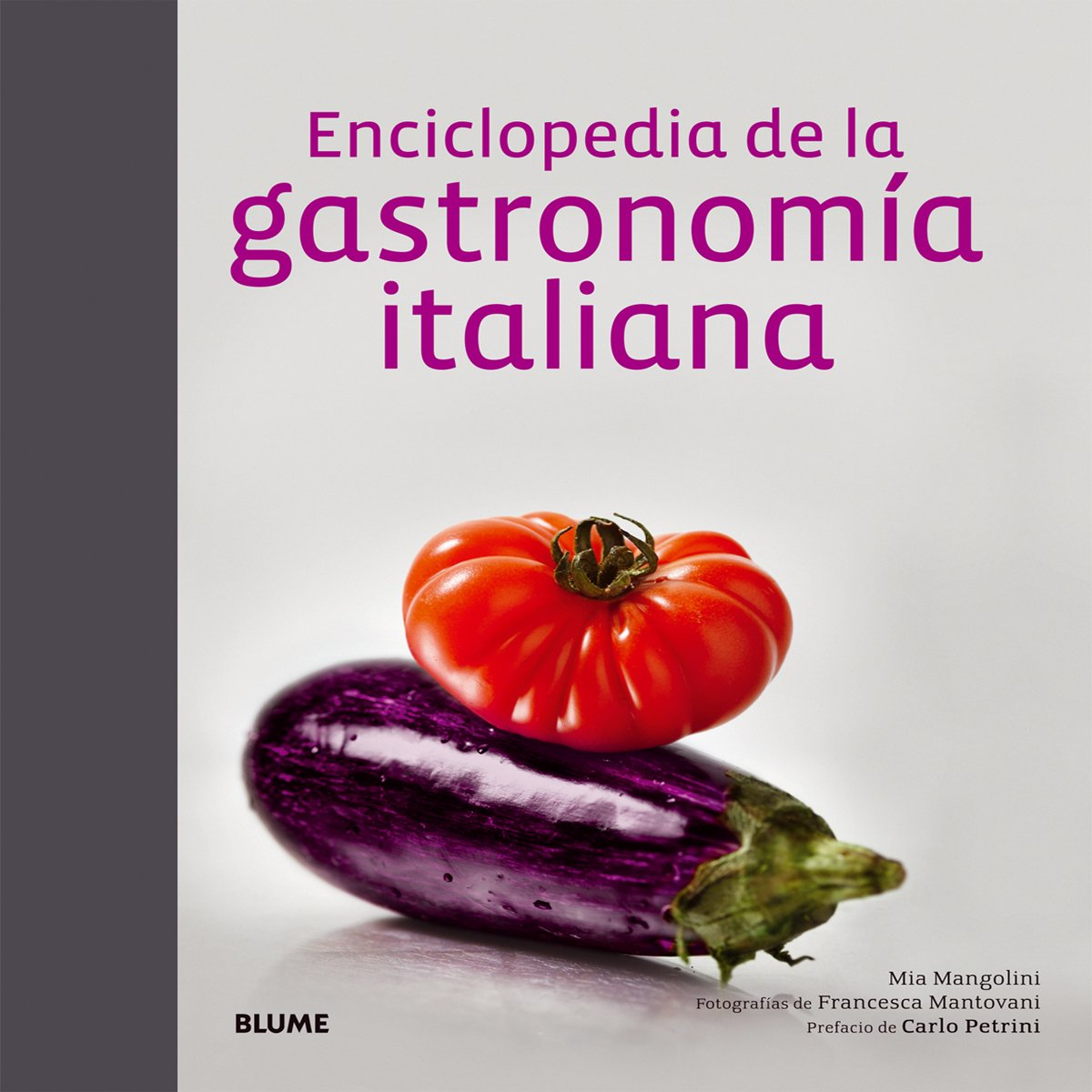 ENCICLOPEDIA DE LA GASTRONOMIA ITALIANA / PD.: Varios: 9788416138098: Amazon.com: Books
