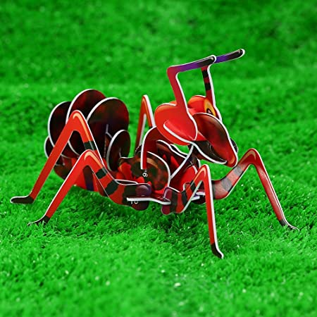 GoolRC Puzzle en Bois 3D Fourmi Insecte Puzzle Jouet