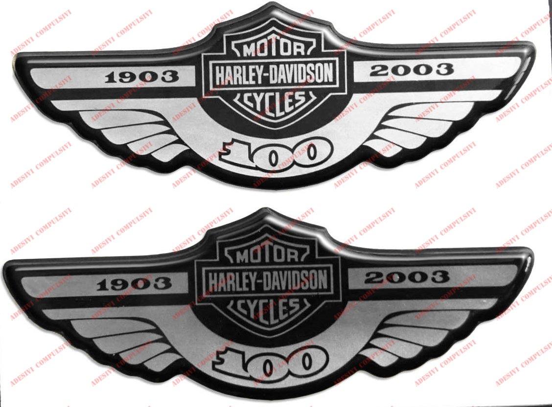 Wappen Logo Decal Harley Davidson, 100 Jahre 1903 –  2003, Silver, Paar Aufkleber harzbeschichtet, Effekt 3d. Fü r Benzintank oder Helm Adesivi Compulsivi