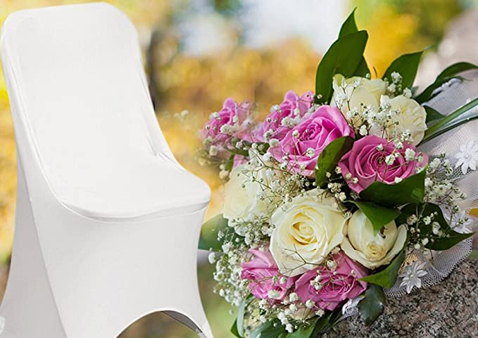 Amazon.com: Primavera Rose (TM) 50 ecoluxe Color Blanco ...