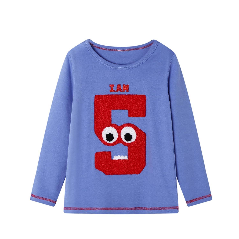 BIBNice Toddler Girls Cotton T-Shirt Long Sleeve Tee Kids Crewneck Clothes 2 Pack 18M-7T