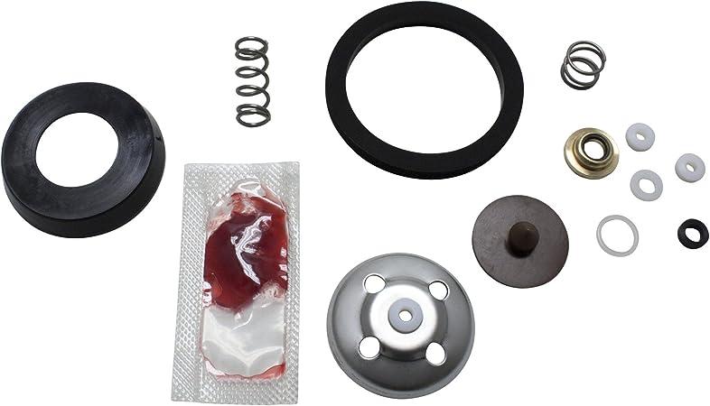 Amazon.com: B & G Junta Kit de reparación gd-124 22050100 ...