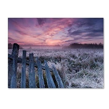 Dawn Of Bialowieza Meadows By Krzysztof Lorant 18x24 Inch Canvas Wall Art Amazon In Electronics