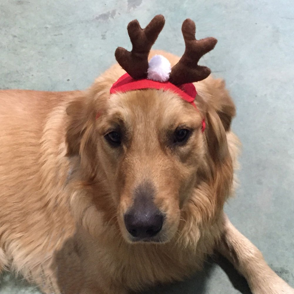 Gemini_mall® Christmas Costume Pet Cat Dog Antlers Hat Cap Pet Dog Clothes Reindeer Horns Headwear Puppy Doggy Kitten Headband Christmas Collar Xmas Costume (Brown&Red)
