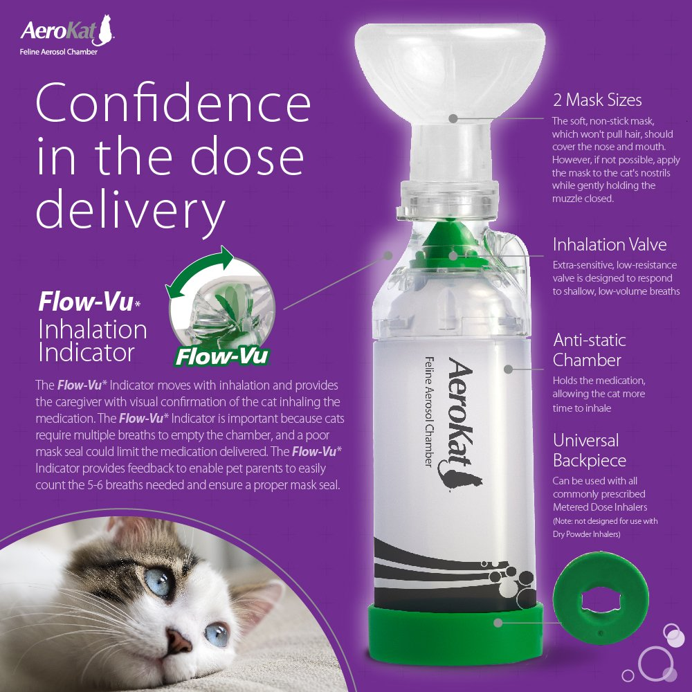 Cámara de inhalación para gatos Aerokat de Trudell Medical Int: Amazon.es: Productos para mascotas