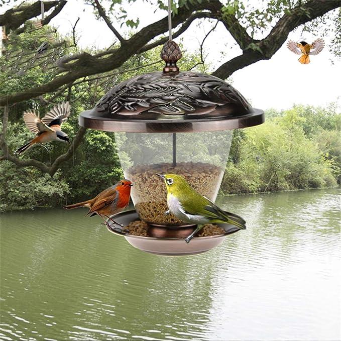 QINAIDI Comedero para pájaros, contenedor de Semillas de Girasol para Alimentos de Aves, para jardín de Campo y Exterior: Amazon.es: Deportes y aire libre