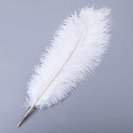 10pcs Natural Ostrich Feather Craft 14-16inch Plume for Wedding Centerpieces Home Decoration White 35-40cm