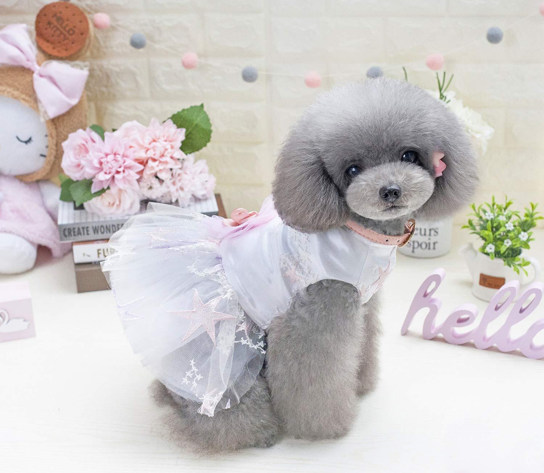 L HSDDA Party Pet Costume Dog skirt pet clothes starfish skirt (Size   L) Pet Uniform (Size   L)