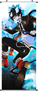 CosInStyle Large Fabric Rolling Picture, for Rin Okumura Kakemono, 100 x 40 cm
