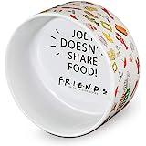 Warner Bros Friends TV Show Central Perk Ceramic Dog Food Bowl, 6 in | White Dog Bowl, Friends TV Show Mug Friends Merchandis