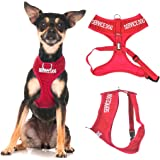 SERVICE DOG (Do Not Disturb/Dog Is Working) Blue Color Coded Non-Pull Front and Back D Ring Padded and Waterproof Vest Dog Harness PREVENTS Accidents By Warning Others Of Your Dog In Advance