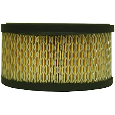 Luber-finer AF211 Heavy Duty Air Filter: Automotive