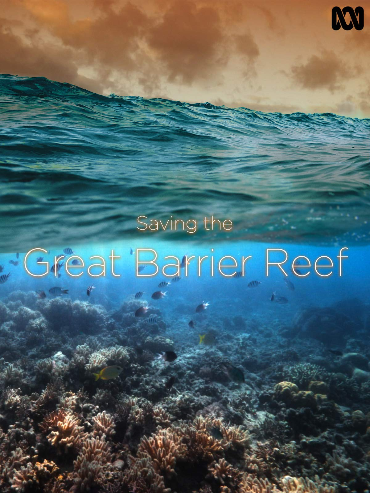 Saving the Great Barrier Reef on Amazon Prime Video UK