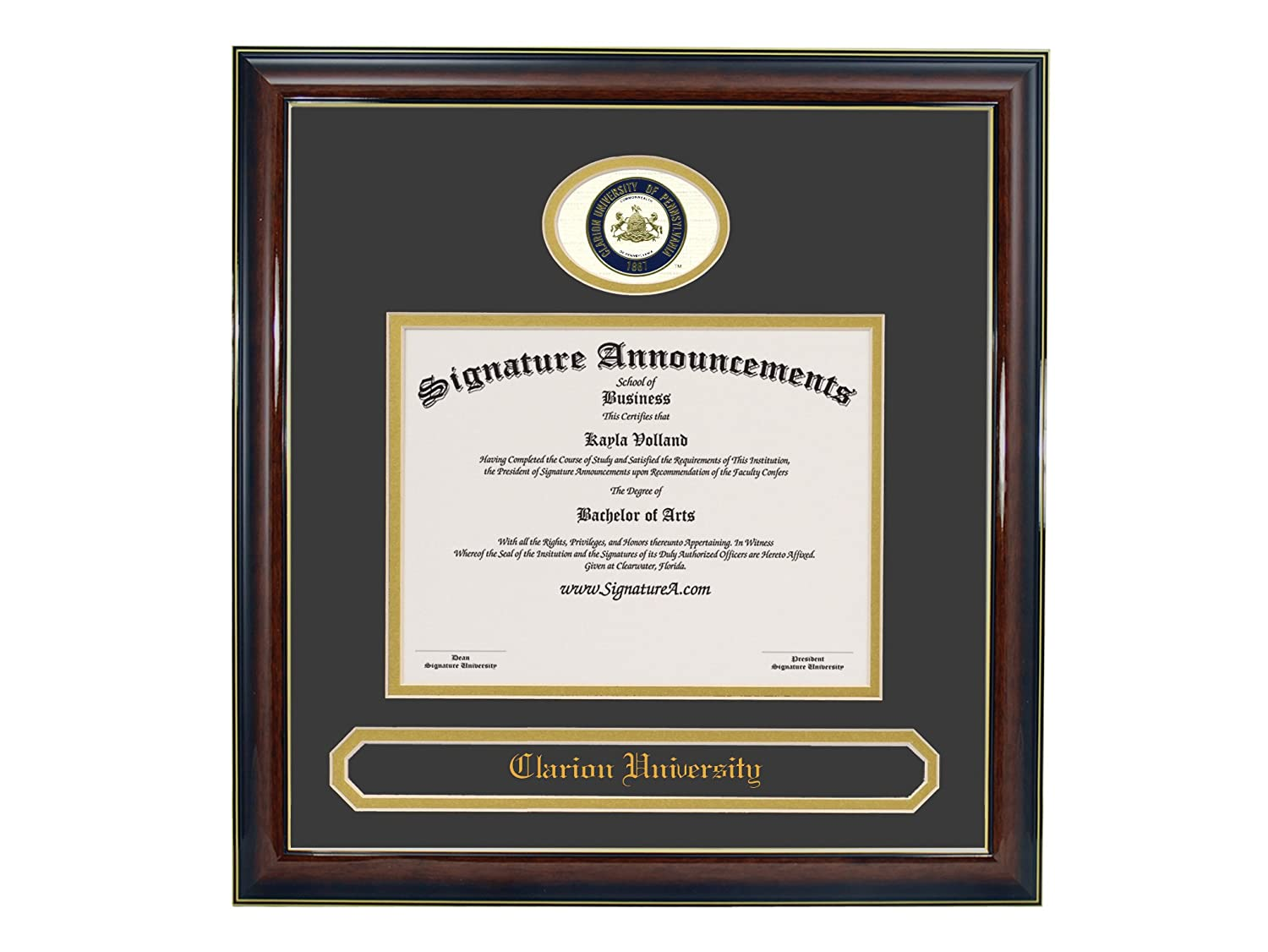 Gold Accent Gloss Mahogany Signature Announcements University-of-Dayton Undergraduate Sculpted Foil Seal /& Name Graduation Diploma Frame 16 x 16