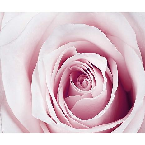 VLIES FOTOTAPETE Rosa Blätter Tapete XXL Vliestapete