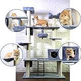 Kratzbaum XXL Ziigo Katzenbaum große Katzen Katzenkratzbaum mehrere Katzen 205 cm deckenhoch Kratzmöbel Natursisal stabile Kletterbaum mit massiven Stämme grau