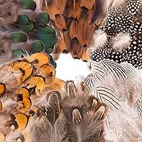 WXJ13 210 piezas 6 estilos de plumas naturales