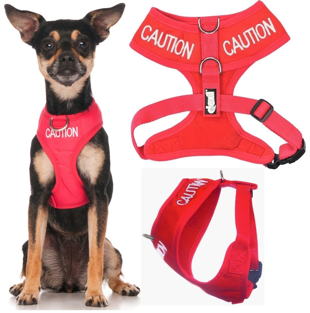 Dexil Limited Caution (Do Not Approach) Red Color Coded Non-Pull Front and Back D Ring Padded and Waterproof Vest Dog Harness Prevents Accidents by Warning Others of Your Dog in Advance (XS)