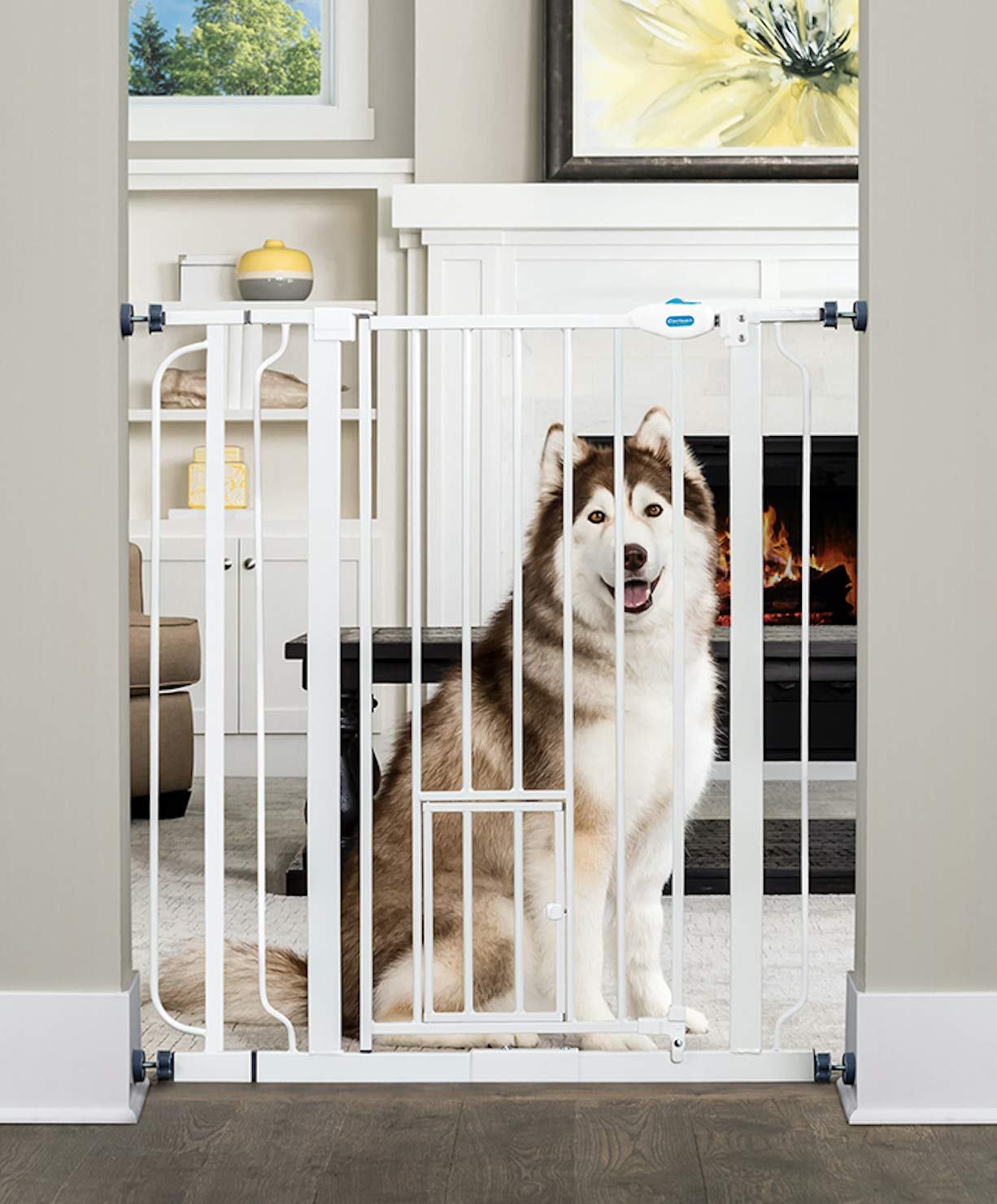 Carlson Extra Tall Walk Through Pet Gate with Small Pet Door, Includes 4-Inch Extension Kit, 4 Pack Pressure Mount Kit and 4 Pack Wall Mount Kit by Carlson