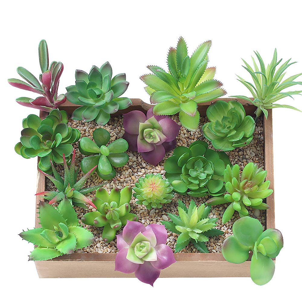 KUUQA 16 Pcs Mixed Artificial Succulent Flowers Plants Unpotted Decor Stems Fake Succulents Plants Bulk Assorted Picks Home Decor Indoor Wall Garden DIY Decorations