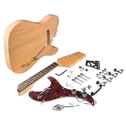 Saga Electric Mandolin Kit 23campusmatercom
